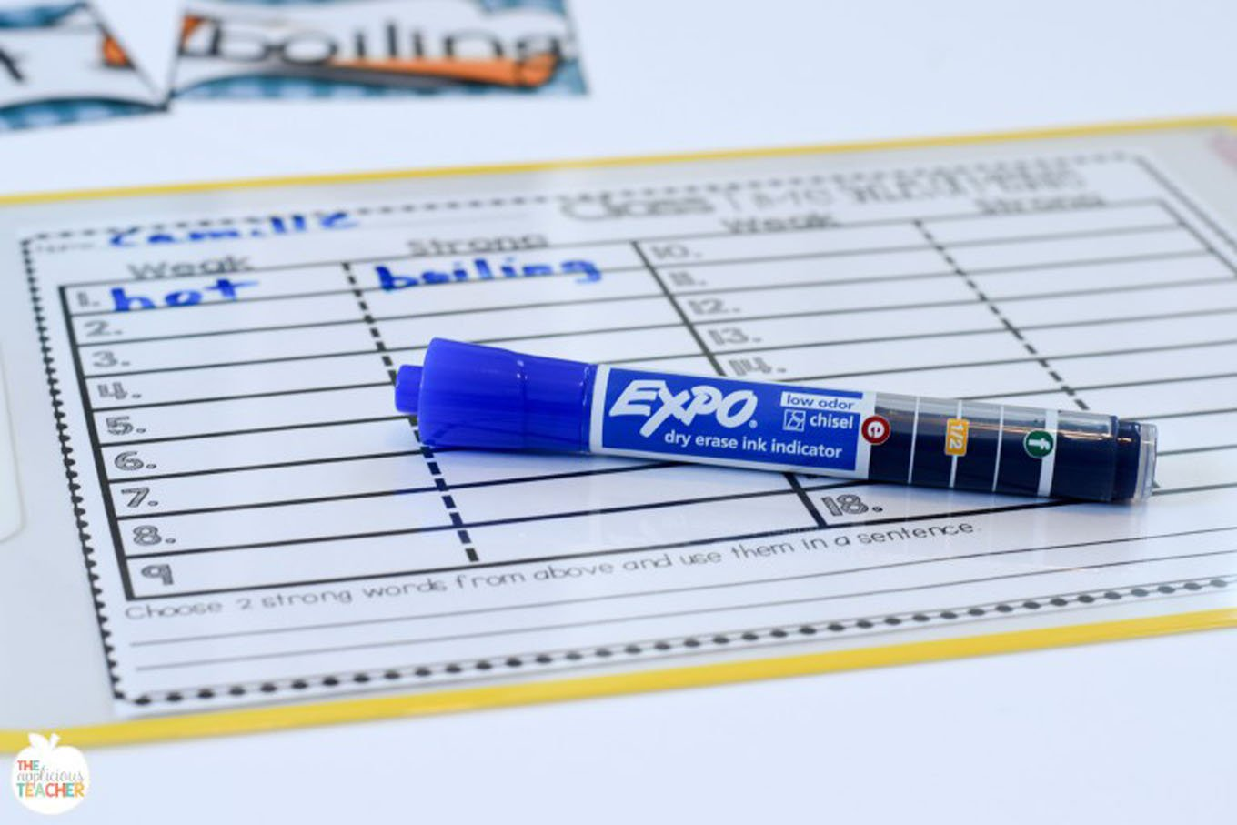 expo-placemat-checklist-written-in-blue-ink-indicator-expo-marker.jpg