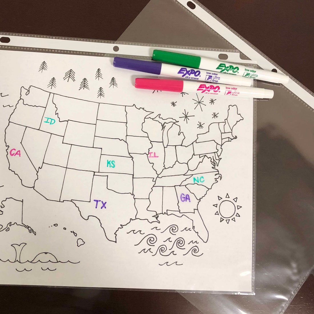 map-of-united-states-with-states-labeled-by-expo-thin-markers