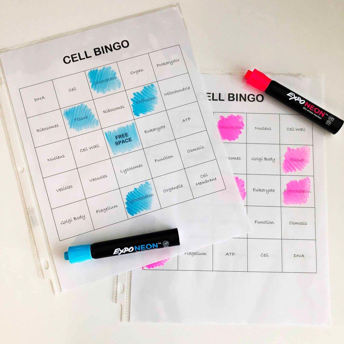 bingo-with-expo-neon-markers